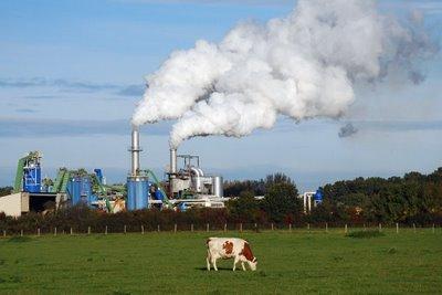 Vache-usine