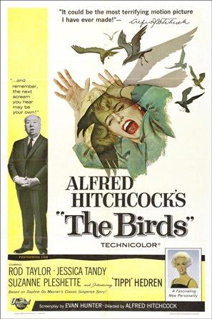 the_birds