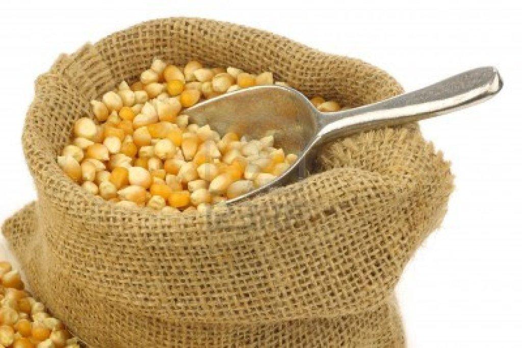 Un gros sac de maïs, Sidi, vraiment?