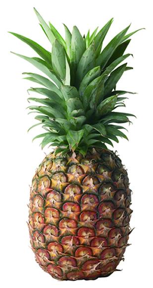 De par le jeu des implicites de Dieudonné ceci est désormais un crypto-signal anti-juif d'autant plus imparable qu'il est anodin. Qui vous poursuivra pour avoir brandis un ananas?
