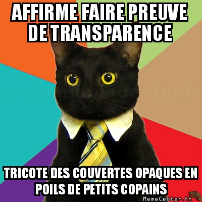 business-cat-affirme-faire-preuve-de-transparence-tricote-des-couvertes-opaques-en-poils-de-petits-copains