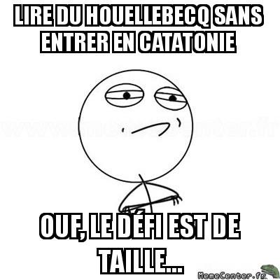 challenge-accepted-lire-du-houellebecq-sans-entrer-en-catatonie