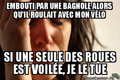 first-world-problems-embouti-par-une-bagnole