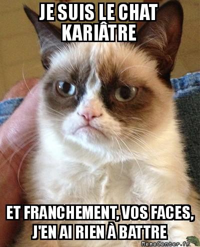 grumpy-cat-je-suis-le-chat-kariatre-et-franchement-vos-faces-jen-ai-rien-a-battre