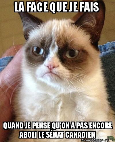 grumpy-cat-la-face-que-je-fais-quand-je-pense-quon-a-pas-encore-aboli-le-senat-canadien