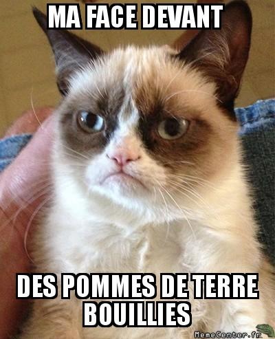 grumpy-cat-ma-face-devant-des-pommes-de-terre-bouillies