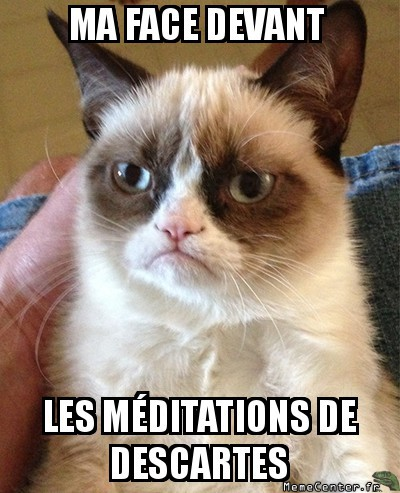 grumpy-cat-ma-face-devant-les-meditations-de-descartes