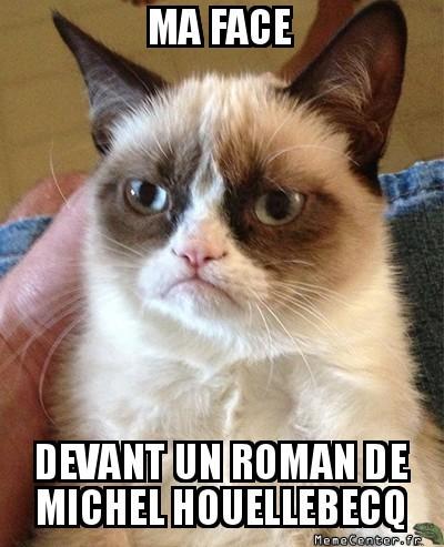 grumpy-cat-ma-face-devant-un-roman-de-michel-houellebecq