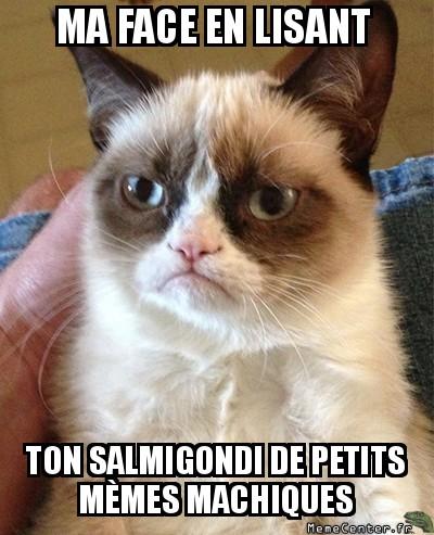 grumpy-cat-ma-face-en-lisant-ton-salmigondi-de-petits-memes-machiques