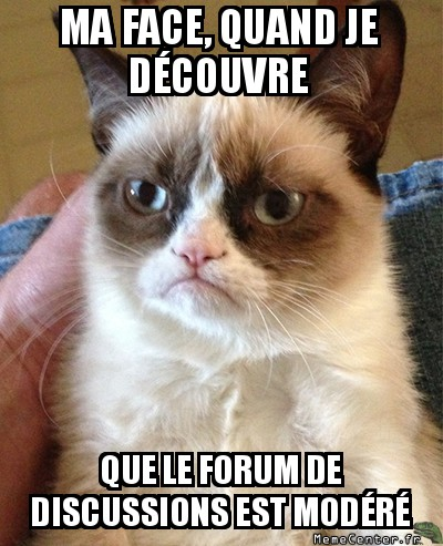 grumpy-cat-ma-face-quand-je-decouvre-que-le-forum-de-discussions-est-modere