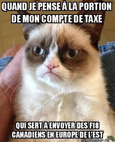 grumpy-cat-quand-je-pense-a-la-portion-de-mon-compte-de-taxe-qui-sert-a-envoyer-des-f18-canadiens-en-europe-de-lest