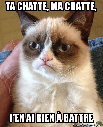 grumpy-cat-ta-chatte-ma-chatte-jen-ai-rien-a-battre
