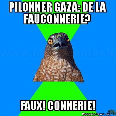 hawkward-pilonner-gaza-de-la-fauconnerie-faux-connerie