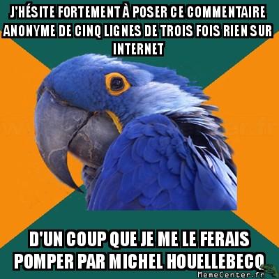 paranoid-parrot-jhesite-fortement-a-poser-ce-commentaire-anonyme-de-cinq-lignes-de-trois-fois-rien-sur-internet-dun-coup-que-je-me-le-ferais-pom