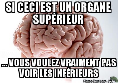 scumbag-brain-si-ceci-est-un-organe-superieur-----vous-voulez-vraiment-pas-voir-les-inferieurs