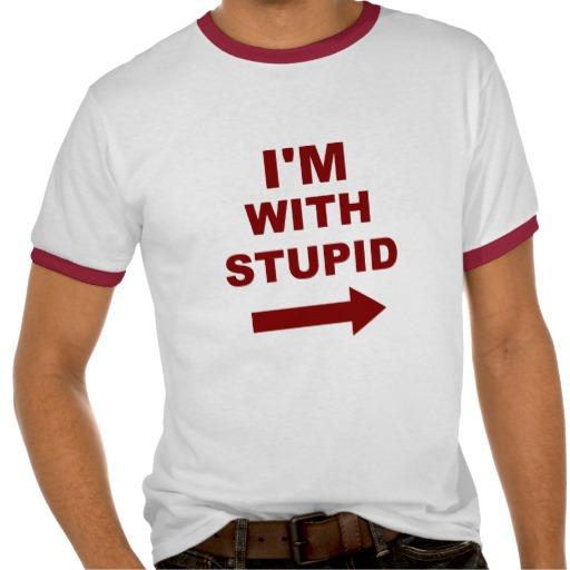 Stupid-gaminet