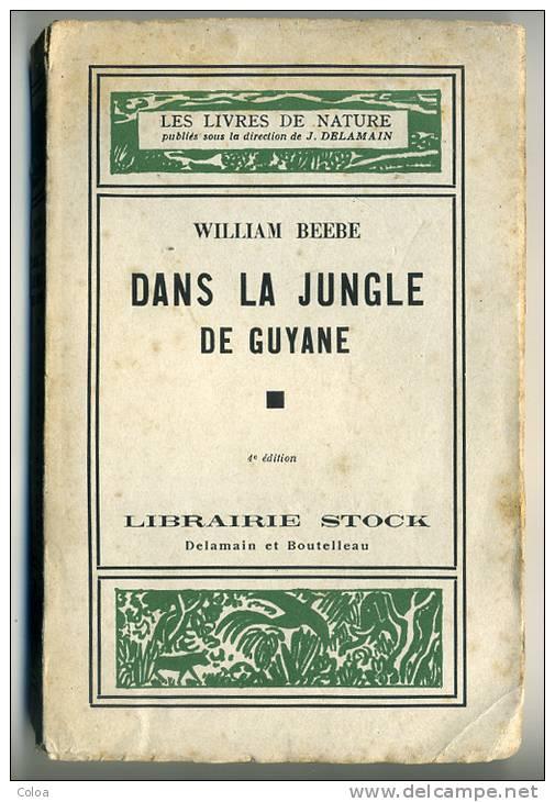 Beebe-Jungle de Guyane