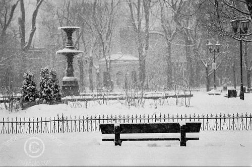 Carre-saint-louis-hiver
