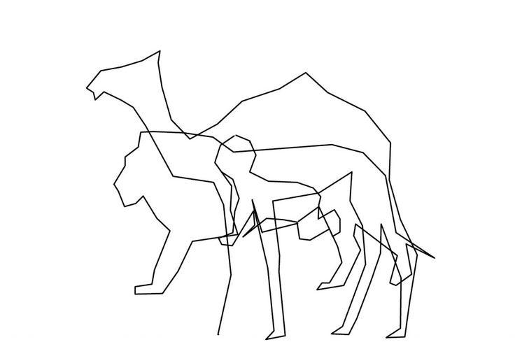 chameau-lion-enfant